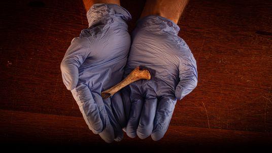 Como interpretar o passado a partir de objetos arqueológicos