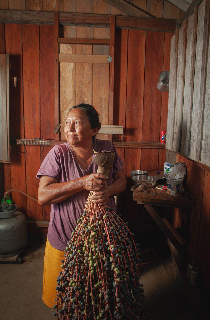 Moradora do rio Tapajós, próximo a Monte Alegre, a senhora traz para casa um robusto cacho ...