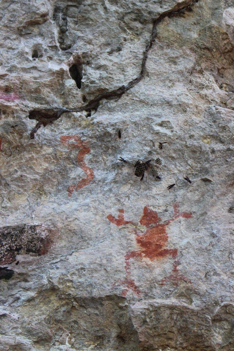 Pintura de sapo no sítio da Pedra Pintada, em Monte Alegre, remete aos muiraquitãs. A região ...