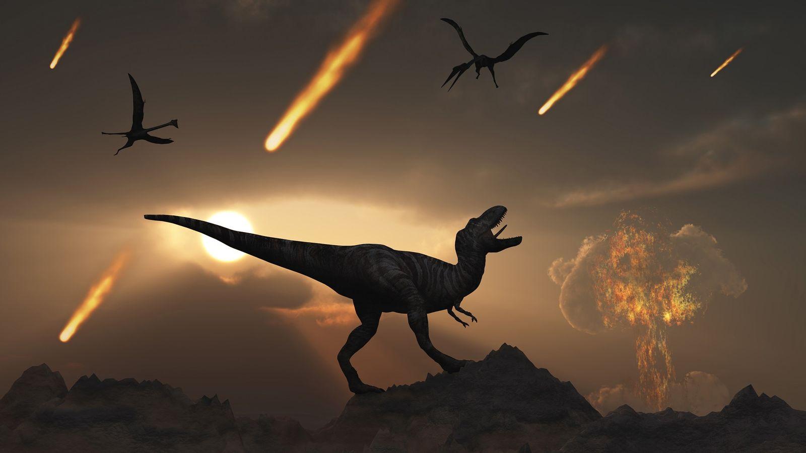 No final do período Cretáceo, 66 milhões de anos atrás, o enorme impacto de um asteroide ...