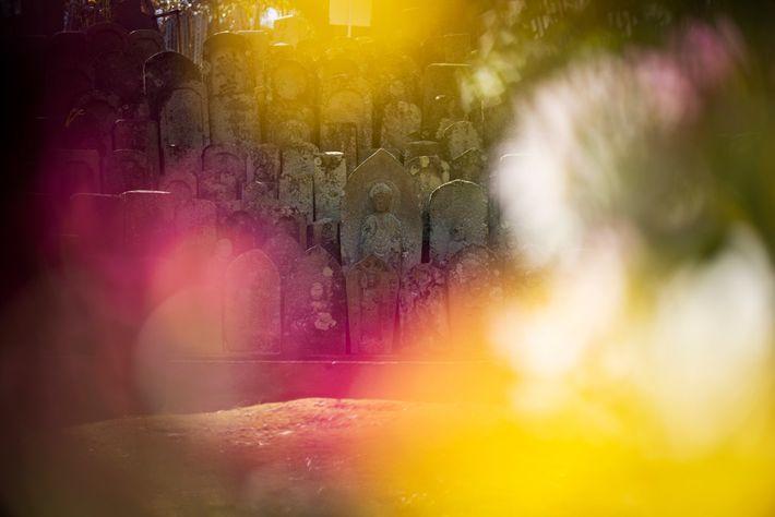 As vítimas da bomba descansam em paz em um cemitério na colina de um terreno arborizado ...