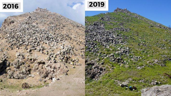 Antes e depois: Redonda em 2016 e 2019.