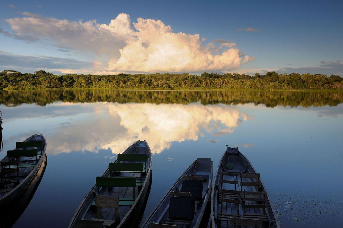 Ecuador: Cruising the Napo
