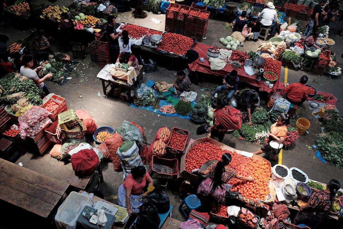 Guatemala: Cornering the Market
