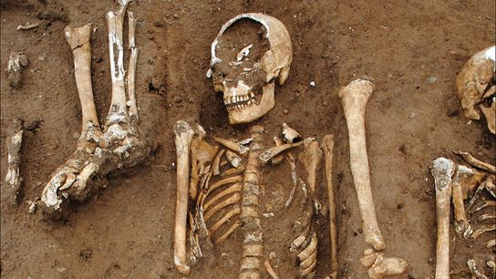 Quarenta pessoas foram enterradas em uma cova coletiva nos terrenos da Abadia de Thornton, na Inglaterra, ...