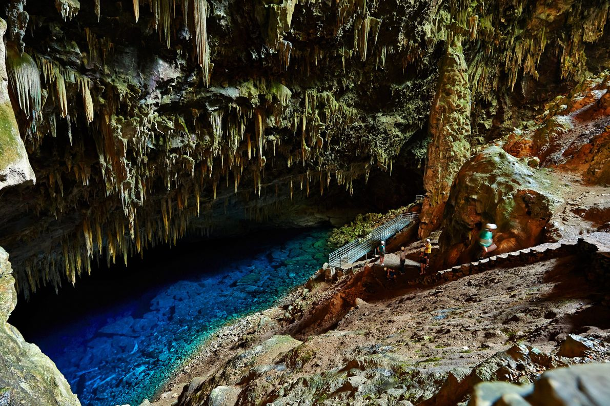 If you make it to the Blue Lake Grotto, look closely through the clear water for ...