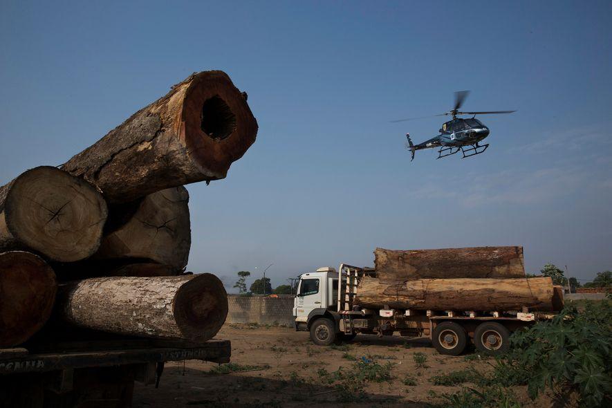 A extração ilegal de madeira continua sendo uma grande ameaça na Amazônia. Aqui, caminhões carregando árvores ...