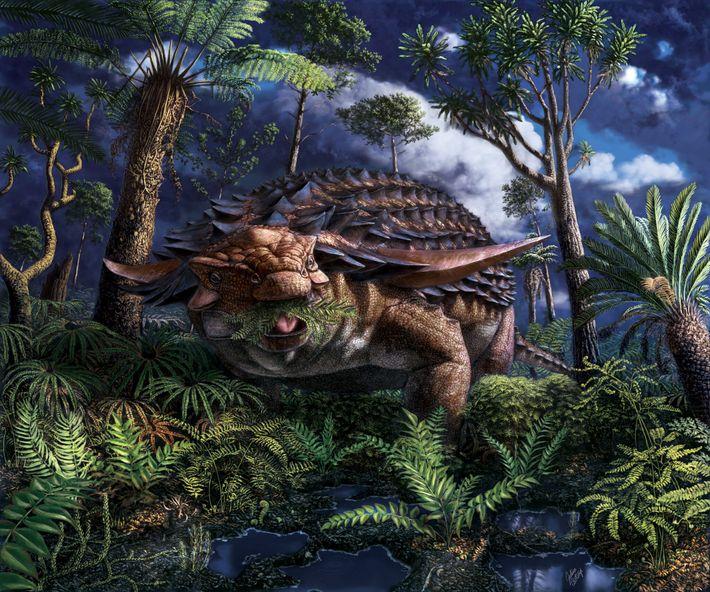 Há cerca de 110 milhões de anos, onde hoje é o noroeste de Alberta, o nodossauro ...