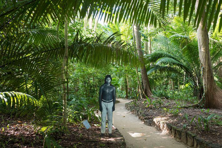 Em um dos caminhos do Museu Paraense Emílio Goeldi, em Belém, está exposto um recorte em ...