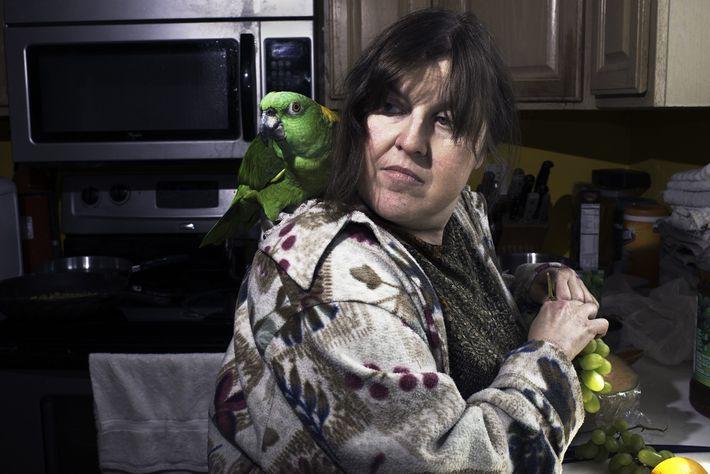 Debi Howard, voluntária pela primeira vez na Wilson Parrot Foundation, faz amizade com um papagaio da ...