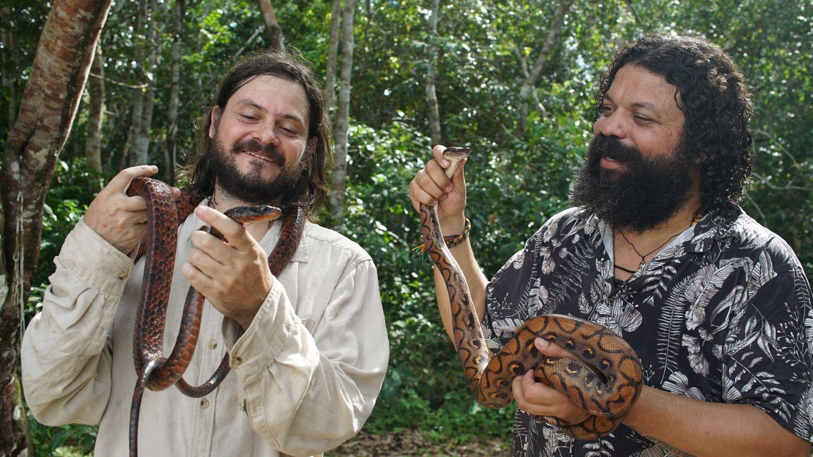 em-busca-das-cobras-promo-2