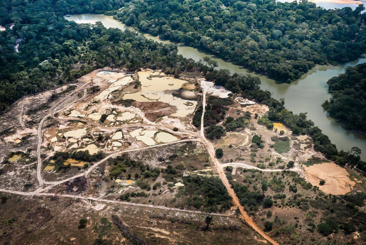 Área de mineração perto do rio Jamanxin, ao norte da cidade de Novo Progresso (PA). A ...