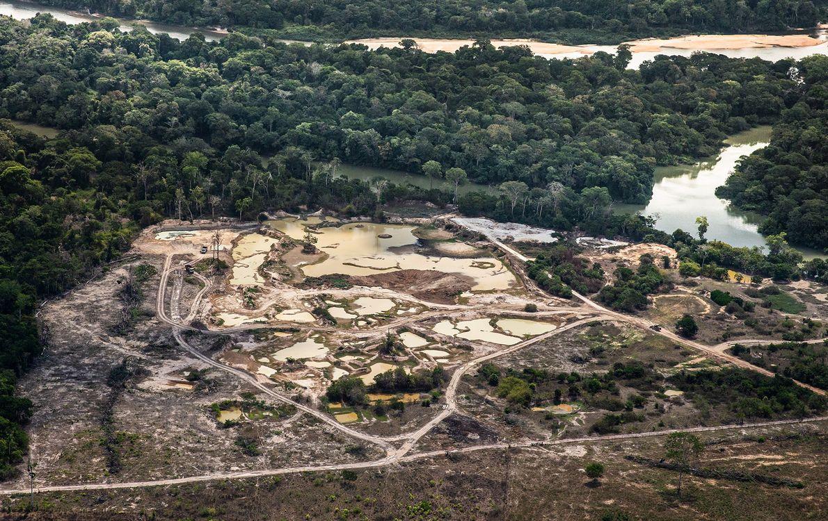Área de mineração no extremo leste da Floresta Nacional Jamanxim, oeste do Pará. Um projeto de ...