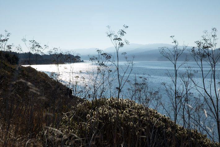Vista da baía de Tomales da rodovia Shoreline Highway (CA Highway 1), perto da fazenda Point ...