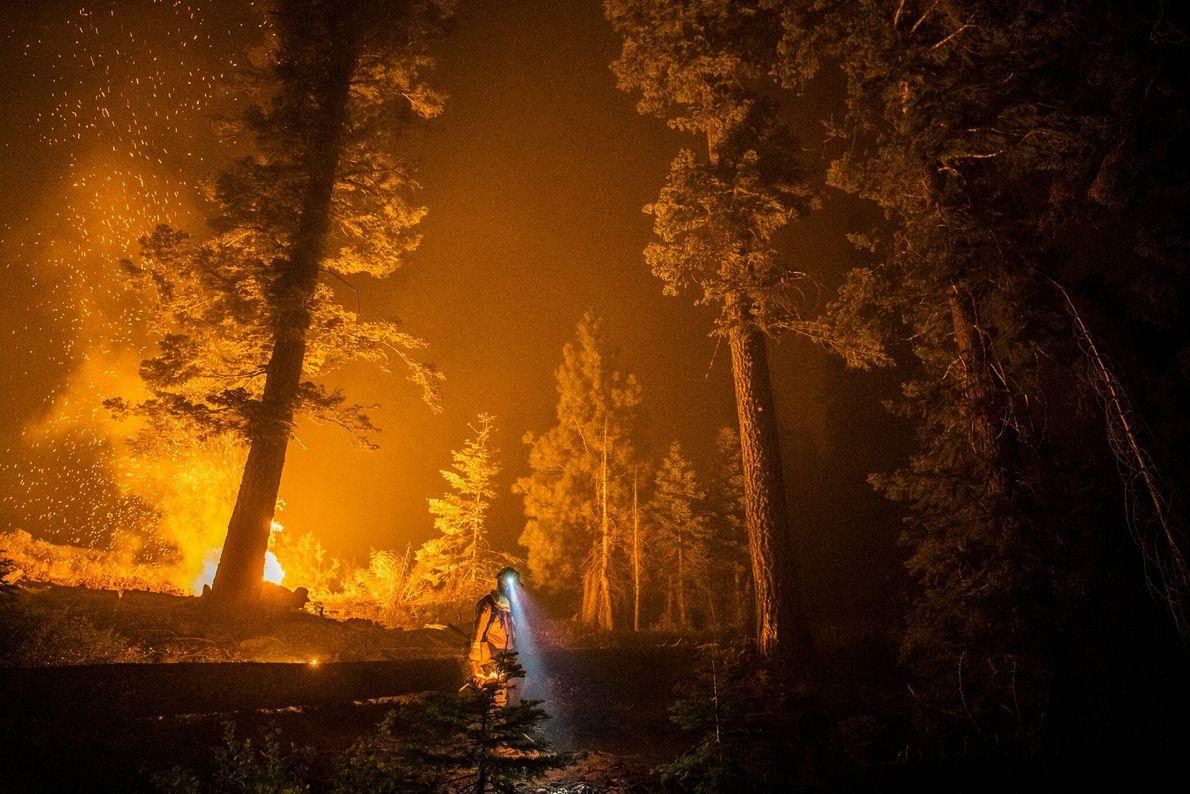 Este ano, a Califórnia sofreu sua pior temporada de incêndios florestais já registrada. Bombeiro caminha pela ...