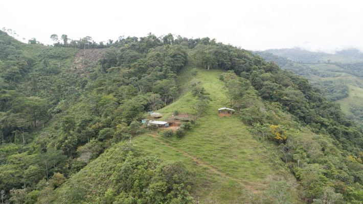 A região de Caquetá, na Colômbia, é considerada uma via de acesso para a Amazônia. Suas ...