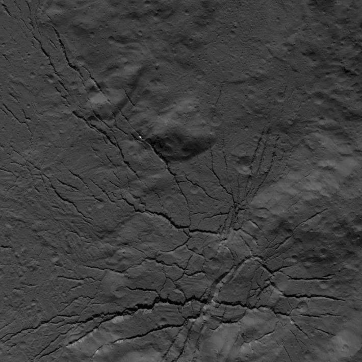 Rede de fraturas no solo da cratera Occator foi fotografa pela sonda Dawn em 26 de ...