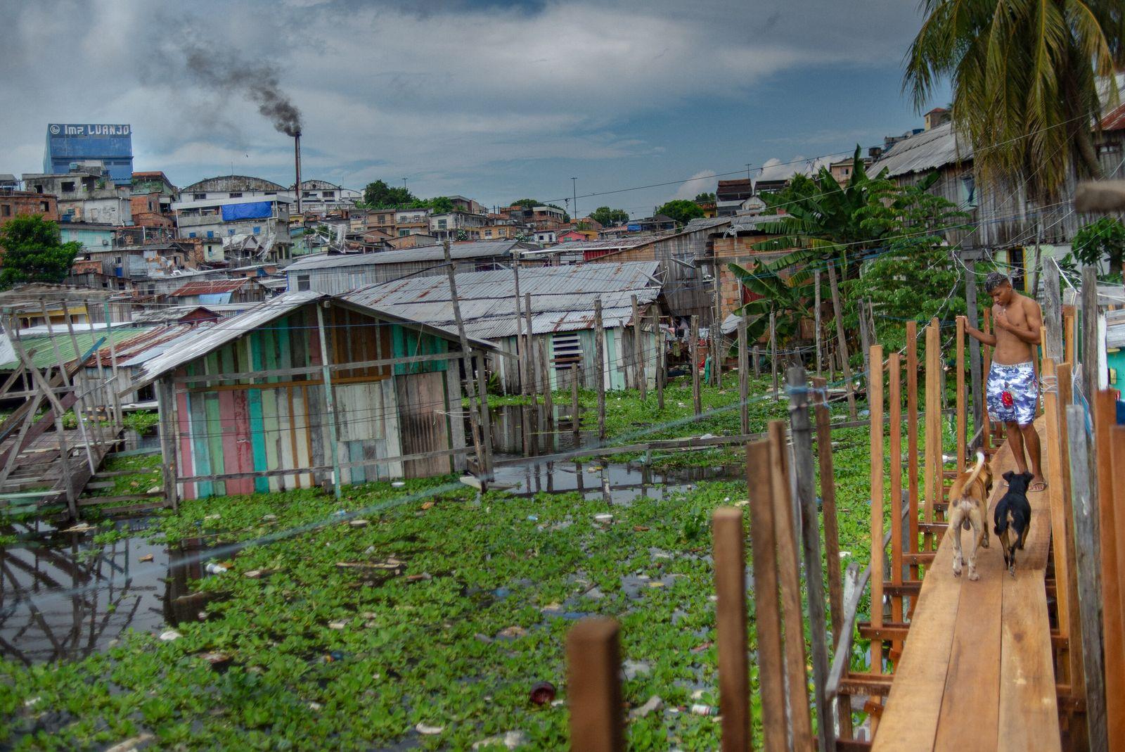Bairro Educandos, na cidade de Manaus, durante a maior cheia da história dos rios Solimões e ...
