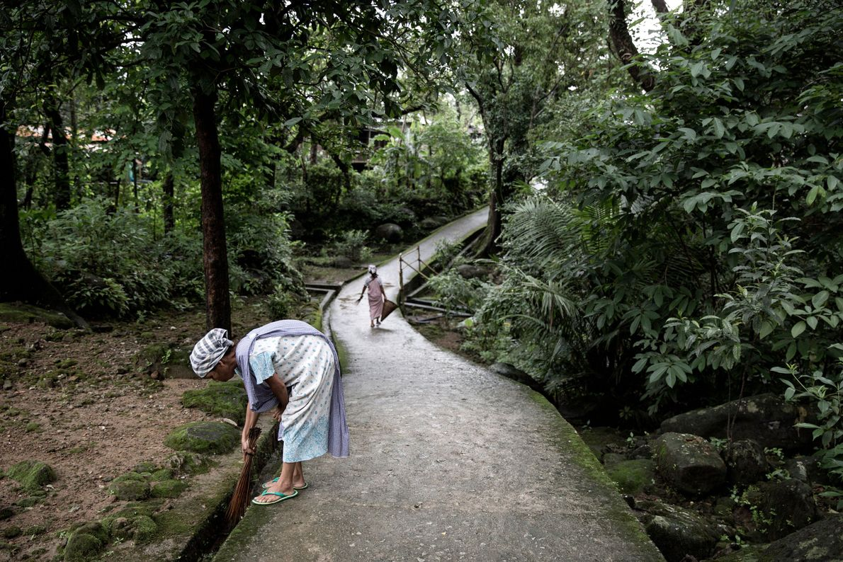 limpeza-pontes-de-raizes-vivas-meghalaya-india