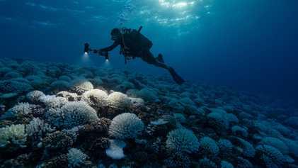 """Mudanças climáticas estão levando planeta a """"ponto de inflexão"""" perigoso"""