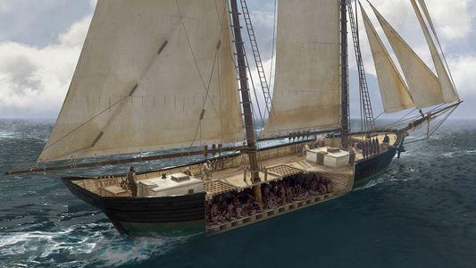 Encontrado último navio negreiro dos EUA, que naufragou mais de 50 anos após abolição do tráfico ...