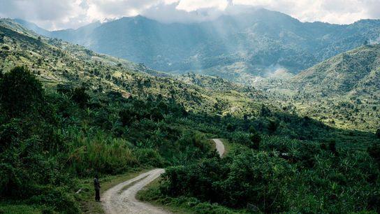 Escondidas abaixo de um véu de nuvens, as montanhas Rwenzori  têm como origem do nome um ...