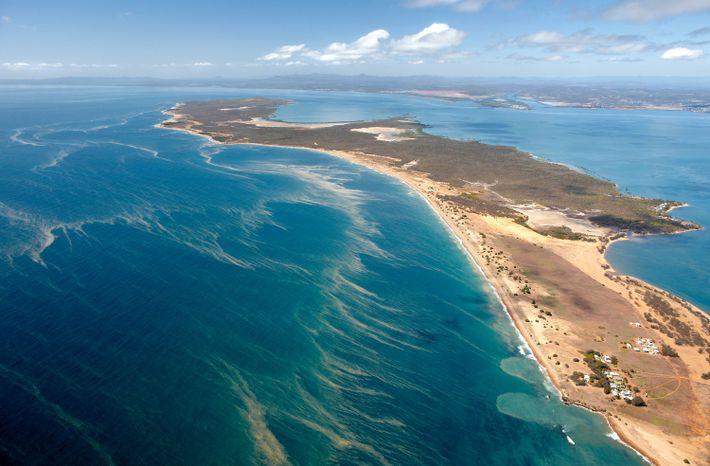 desova-dos-corais-australia