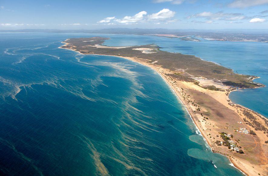 Todos os anos, os recifes de coral sob as ondas de Ningaloo na Austrália Ocidental desovam ...
