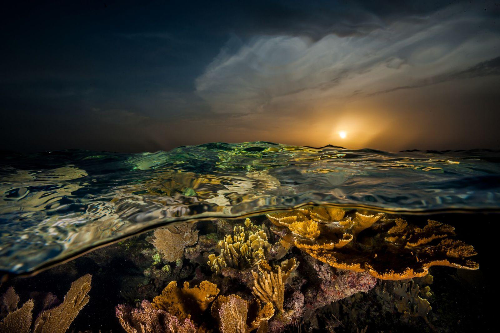 O pôr do sol confere um tom dourado aos corais da costa  meridional de Cuba. ...