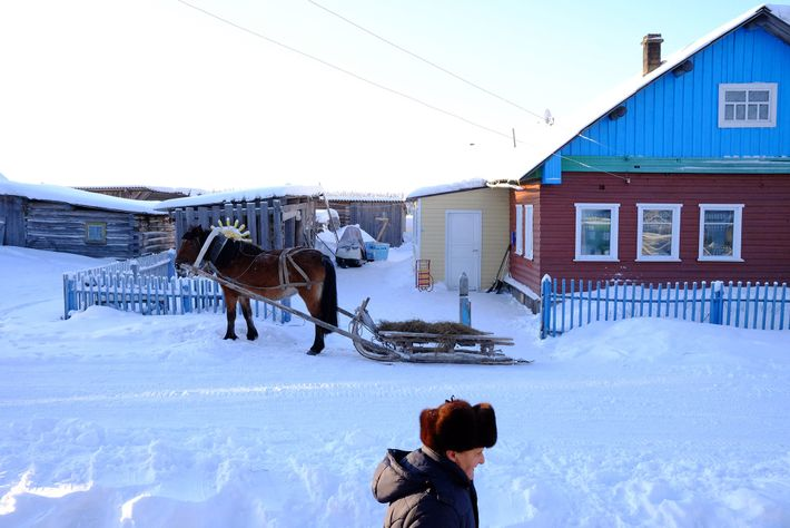 A economia do vilarejo de Sovpolie baseia-se na venda de cavalos. A raça da área é ...