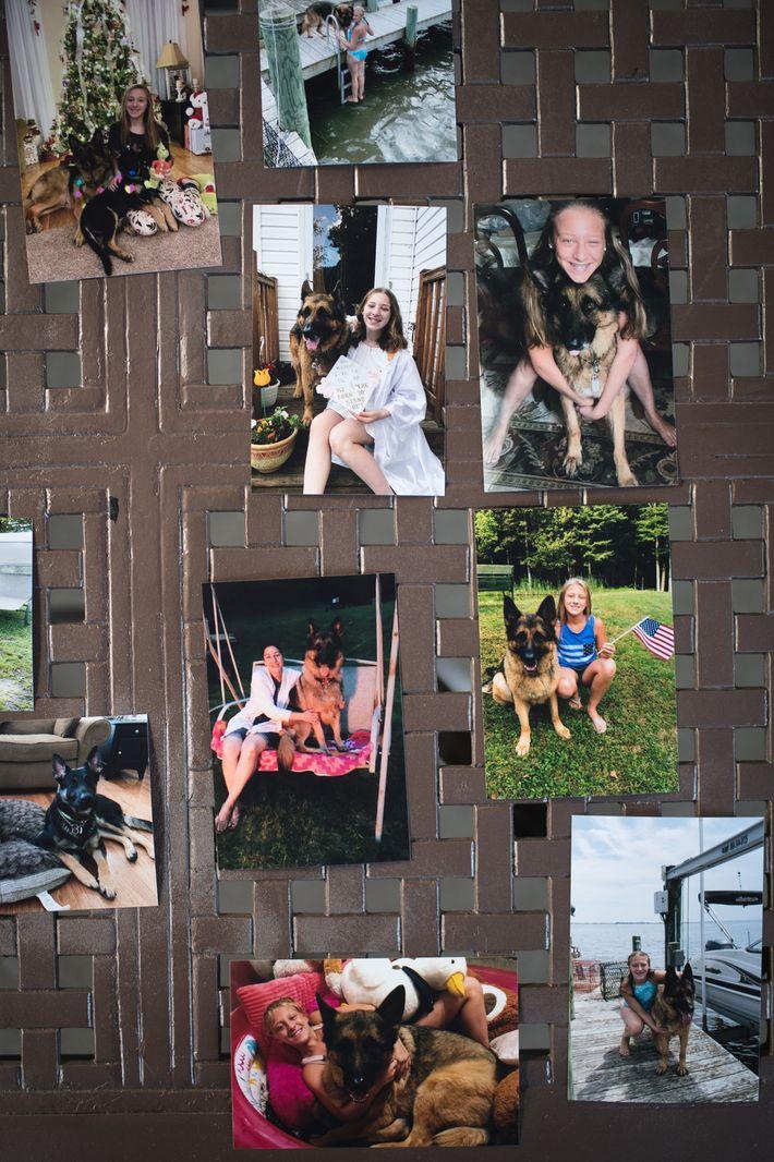 Fotos de Buddy e da filha dos Mahoney, Julianna, dispostas sobre a mesa do quintal da ...