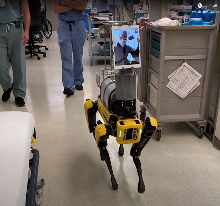 Spot, um robô que parece um cachorro, da Boston Dynamics, permite que os profissionais da saúde ...