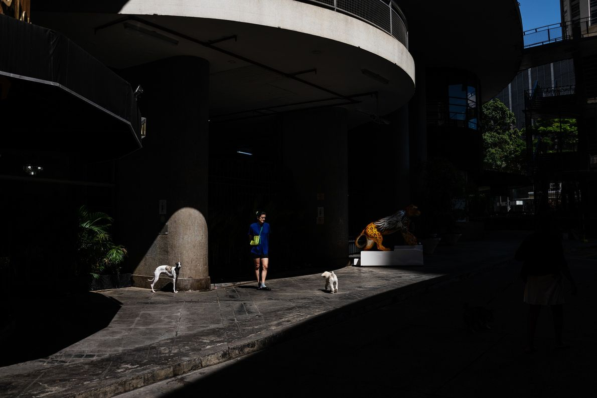 Uma moradora passeia com seus cachorros próximo da entrada do Copan. Como há poucas áreas verdes ...