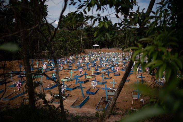 Túmulos de vítimas da covid-19 lotam uma nova ala do cemitério Nossa Senhora Aparecida, em Manaus. ...