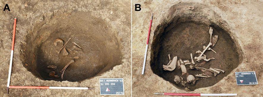 Local onde foram enterrados em Hermanov Vinograd, perto do início da escavação (à direita), com ossos ...