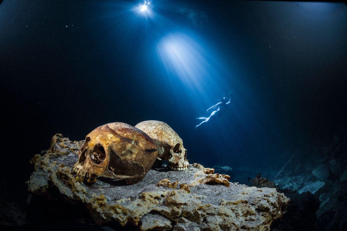 Um mergulhador nada pelas águas por trás de duas caveiras em uma rocha na reserva natural ...