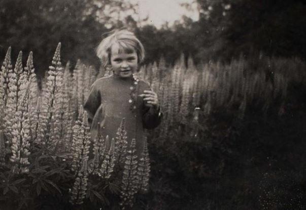 As 'crianças-lobo' esquecidas da Segunda Guerra Mundial | National Geographic