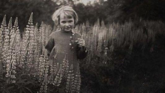 As 'crianças-lobo' esquecidas da Segunda Guerra Mundial
