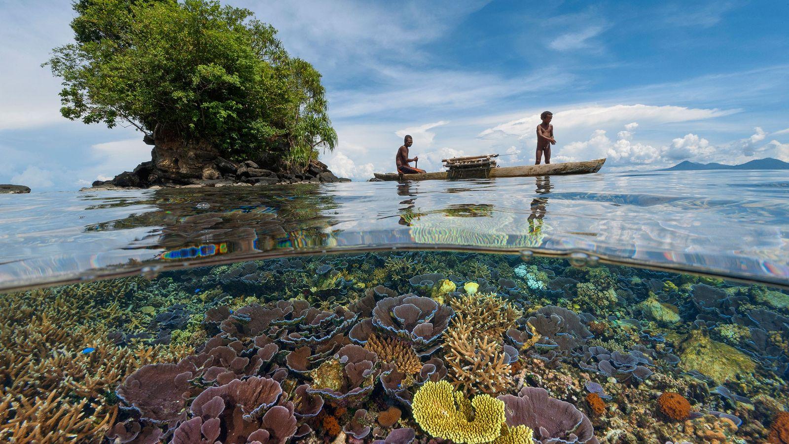 Pai e filho pescadores navegam em uma canoa de madeira sobre corais de recife na Baía ...