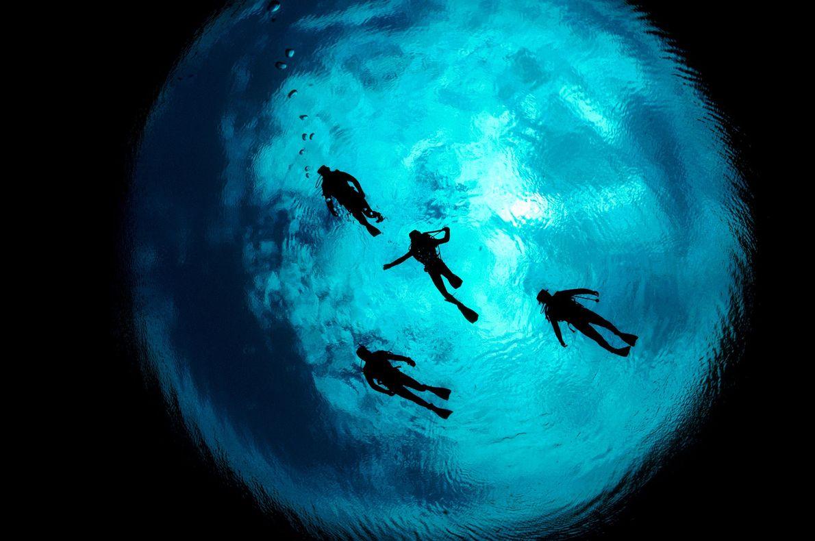 Quatro mergulhadores mergulham em Ewens Pond, sul de Mount Gambier, Austrália.