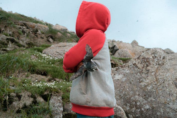 Nas longas noites de verão, as crianças de Little Diomede sobem às montanhas para caçarem pássaros.