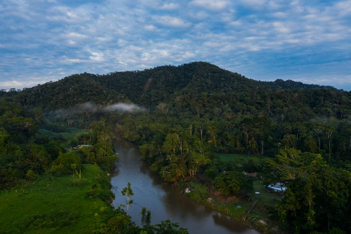 Vista aérea do rio Moa, próximo à comunidade Pé da Serra
