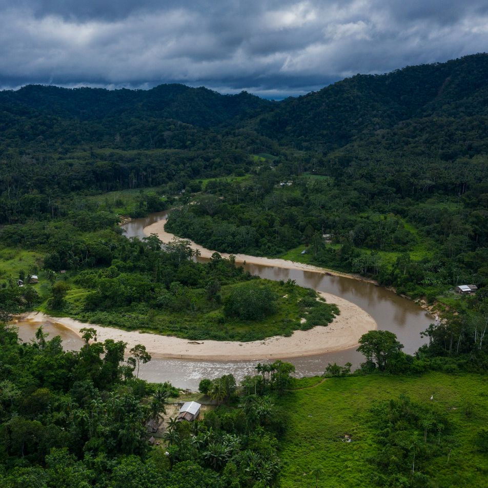 Nova rodovia promovida por Bolsonaro ameaça região mais biodiversa da Amazônia