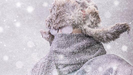 """""""É bom sentir frio"""": confissões de pessoas que amam baixas temperaturas"""