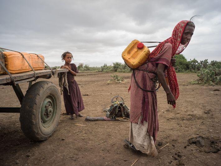 Na região onde vive a etnia tigray, ao norte da Etiópia, uma senhora acaba de pegar ...