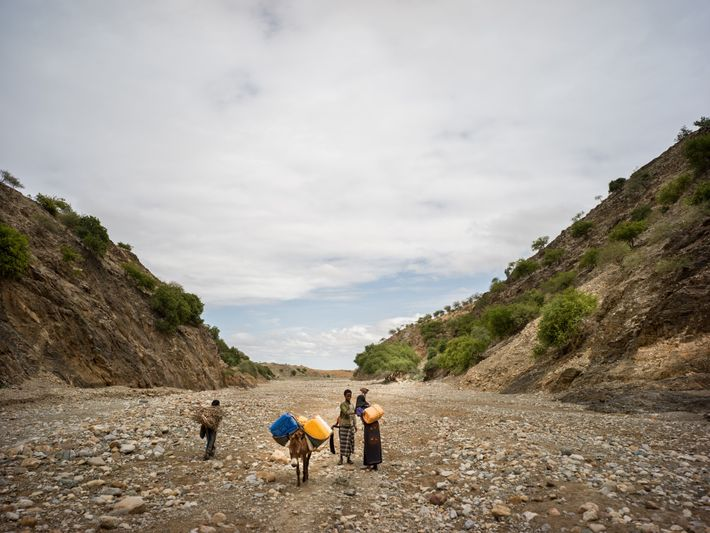 Dia comum em um vilarejo de Afar, ao norte da Etiópia: mulheres carregam água e ...