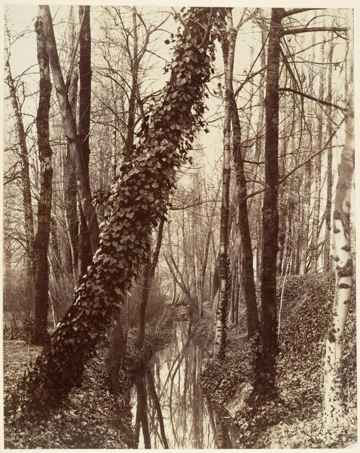 Esta foto, tirada por volta de 1898 pelo famoso fotógrafo Eugène Atget, mostra o Bièvre fluindo ...