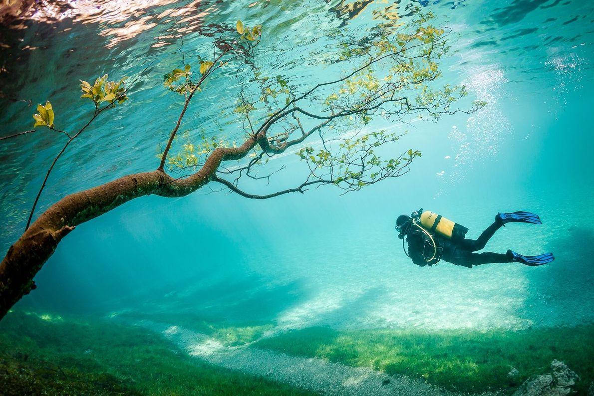 Mundo submerso