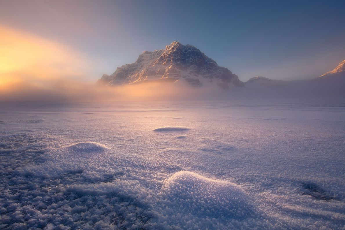 Maravilha de inverno