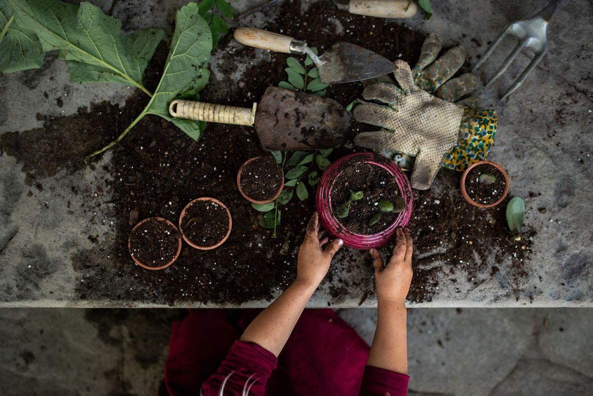 Menina com vaso de plantas vista de cima